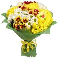 Bouquet of 13 chrysanthemums - flowers and bouquets on roza.zp.ua