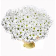 Bouquet of 51 chamomile chrysanthemums - flowers and bouquets on roza.zp.ua