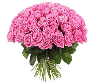 """51 розовая роза в Запорожье"" в интернет-магазине цветов roza.zp.ua"