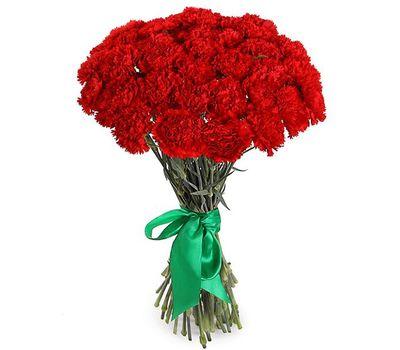 """""""Красивый букет гвоздик"""" в интернет-магазине цветов roza.zp.ua"""