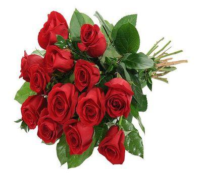 """""""Букет цветов из 13 роз"""" в интернет-магазине цветов roza.zp.ua"""