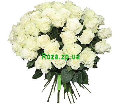 """""""51 white rose"""" in the online flower shop roza.zp.ua"""