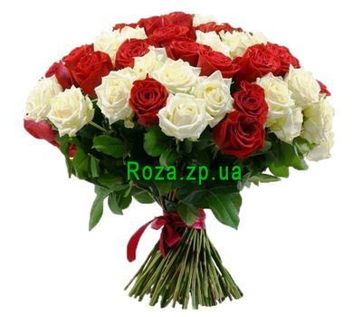 """51 red and white rose"" in the online flower shop roza.zp.ua"