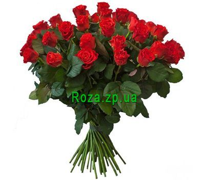 """35 red roses"" in the online flower shop roza.zp.ua"