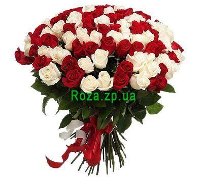 """101 красная и белая импортная роза"" в интернет-магазине цветов roza.zp.ua"