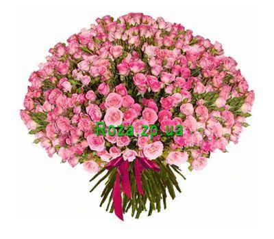 """""""151 кустовая роза"""" в интернет-магазине цветов roza.zp.ua"""