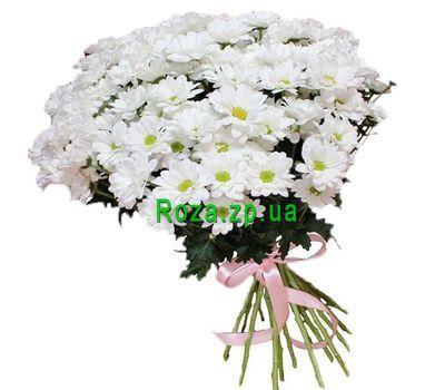 """""""Белоснежные ромашки в букете"""" в интернет-магазине цветов roza.zp.ua"""