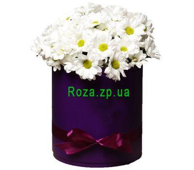"""""""Белые ромашки в коробке"""" в интернет-магазине цветов roza.zp.ua"""