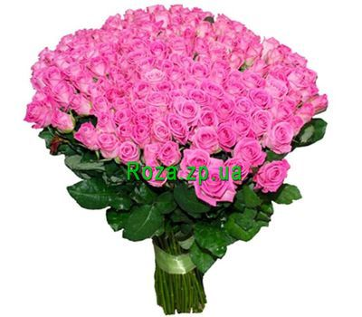 """201 pink rose!"" in the online flower shop roza.zp.ua"