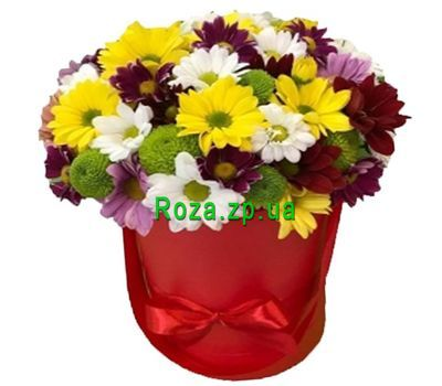 """""""Хризантемы в шляпной коробке"""" в интернет-магазине цветов roza.zp.ua"""