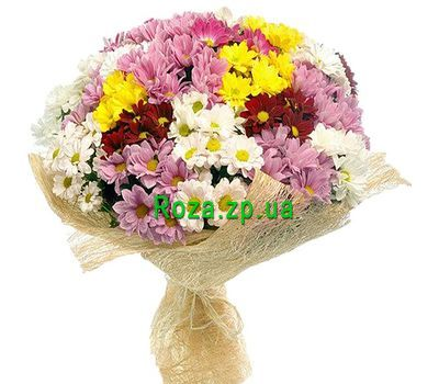 """""""Bouquet of 35 chrysanthemums"""" in the online flower shop roza.zp.ua"""