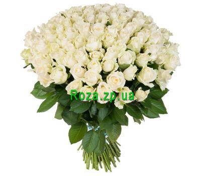 """""""Букет из 101 белой розы с бесплатной доставкой по Запорожью!"""" в интернет-магазине цветов roza.zp.ua"""