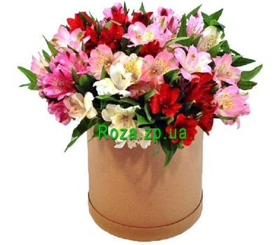 """""""Удивительная коробка альстромерий"""" в интернет-магазине цветов roza.zp.ua"""