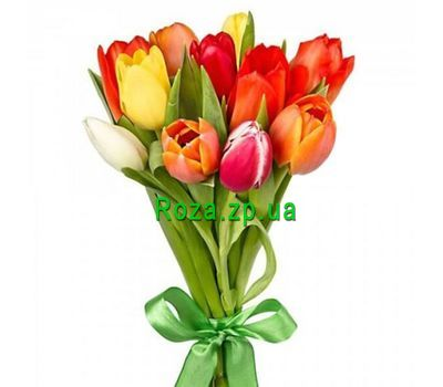 """Bouquet of 11 multi-colored tulips"" in the online flower shop roza.zp.ua"