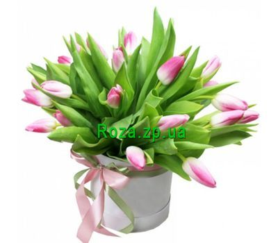 """A box of pink tulips"" in the online flower shop roza.zp.ua"
