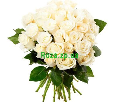 """""""Букет из 31 белой розы"""" в интернет-магазине цветов roza.zp.ua"""