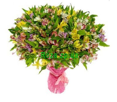 """Bouquet of 101 alstroemerias"" in the online flower shop roza.zp.ua"
