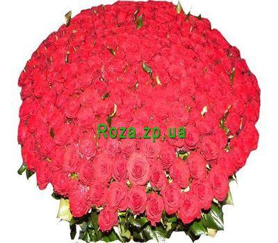"""""""Букет из 501 красной розы"""" в интернет-магазине цветов roza.zp.ua"""