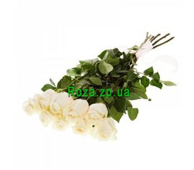 """Bouquet of 9 white roses"" in the online flower shop roza.zp.ua"