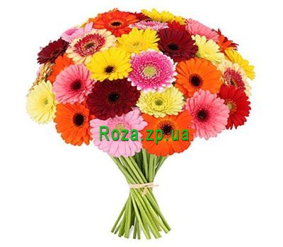 """Bouquet of 51 gerberas"" in the online flower shop roza.zp.ua"
