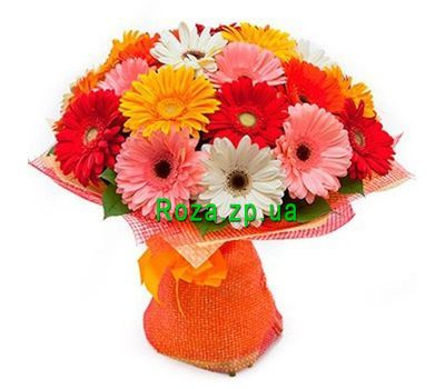 """Bouquet of 25 gerberas"" in the online flower shop roza.zp.ua"