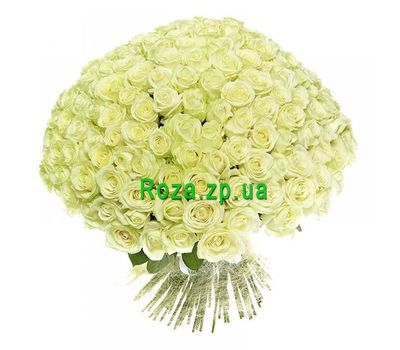 """251 white rose"" in the online flower shop roza.zp.ua"