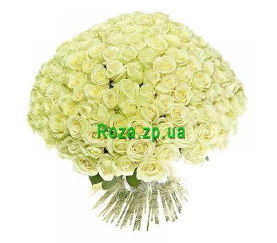 """""""251 белая роза"""" в интернет-магазине цветов roza.zp.ua"""