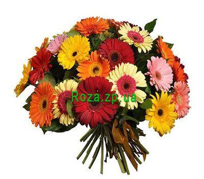 """Bouquet of 35 gerberas"" in the online flower shop roza.zp.ua"