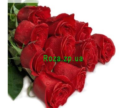 """Bouquet of 11 meter red roses"" in the online flower shop roza.zp.ua"