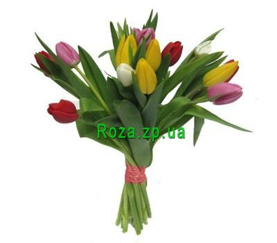 """Bouquet of 17 Tulips"" in the online flower shop roza.zp.ua"