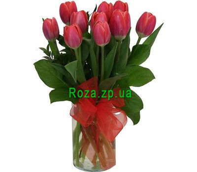 """Bouquet of 11 tulips"" in the online flower shop roza.zp.ua"
