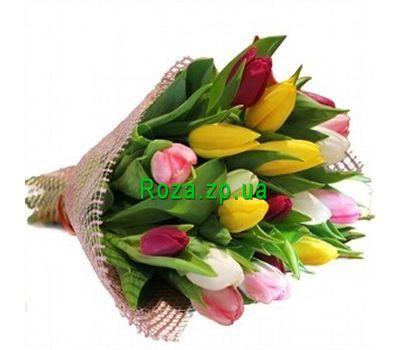 """Bouquet of 25 tulips"" in the online flower shop roza.zp.ua"