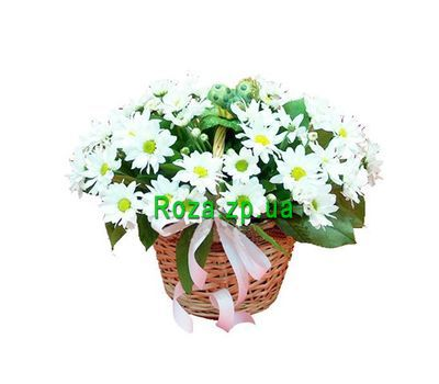 """Basket of flowers from 7 chrysanthemums"" in the online flower shop roza.zp.ua"