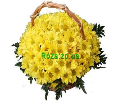 """Basket of flowers from 19 chrysanthemums"" in the online flower shop roza.zp.ua"
