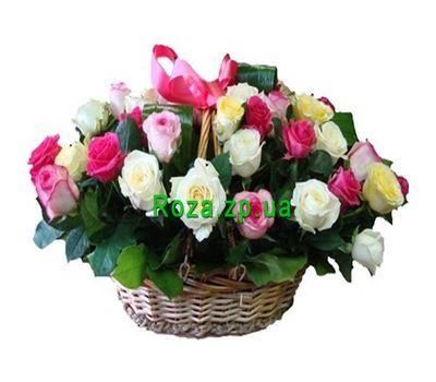 """Basket of flowers from 35 multi-colored roses"" in the online flower shop roza.zp.ua"