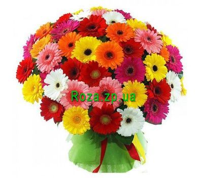 """Bouquet of 101 gerberas"" in the online flower shop roza.zp.ua"