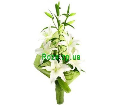 """Bouquet of 1 lilies"" in the online flower shop roza.zp.ua"