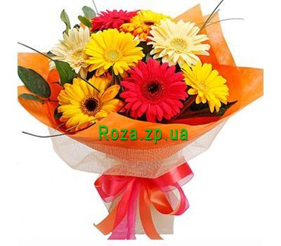 """Bouquet of 9 gerberas"" in the online flower shop roza.zp.ua"