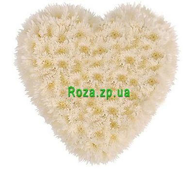"""Heart of 25 white chrysanthemums"" in the online flower shop roza.zp.ua"