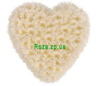 """""""Сердце из 25 белых хризантем"""" в интернет-магазине цветов roza.zp.ua"""
