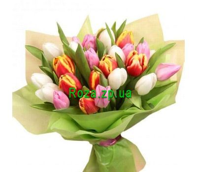 """Bouquet of 27 Tulips"" in the online flower shop roza.zp.ua"