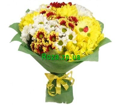 """Bouquet of 13 chrysanthemums"" in the online flower shop roza.zp.ua"