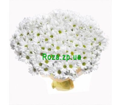 """Bouquet of 51 chamomile chrysanthemums"" in the online flower shop roza.zp.ua"